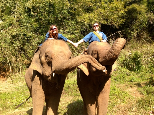 Fun with elephants in Chiang Rai, Thailand